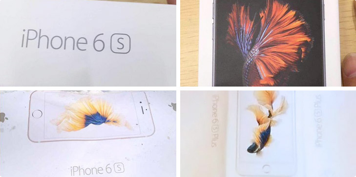 In the Network appeared the photo of the iPhone 6s packs with animated Wallpaper